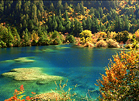Jiuzhaigou in Autumn