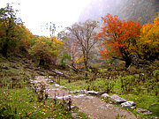 trail in autumn, Yubeng